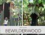 Day out at BeWilderwood